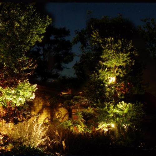 Garden Lights Auckland